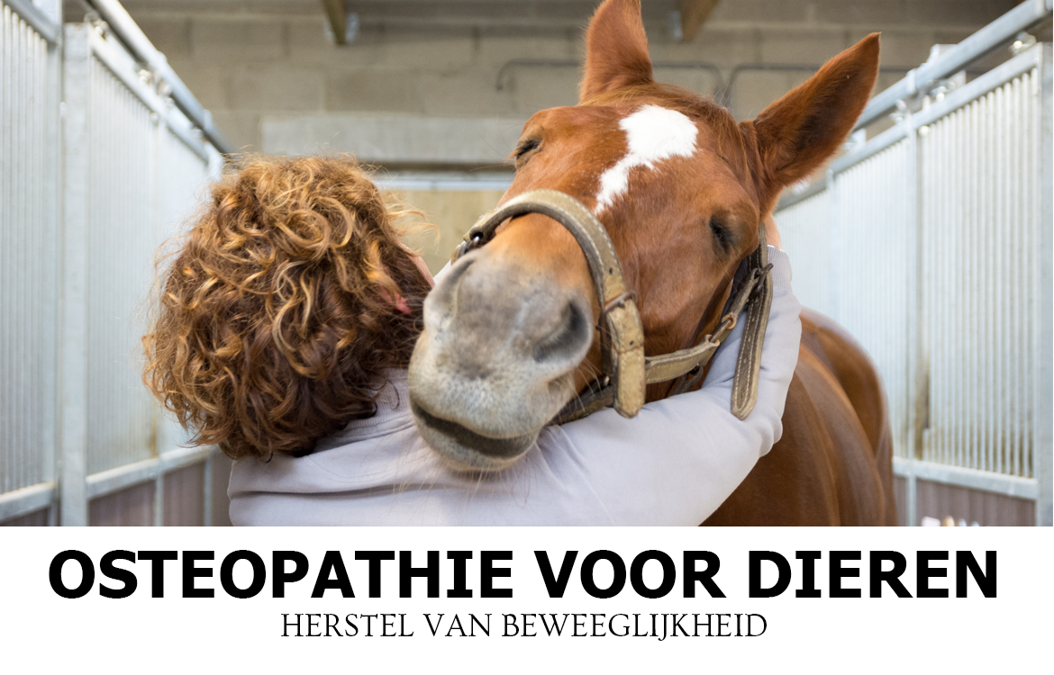 osteopatie-slider